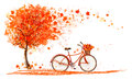 Autumn background with a tree and a bicycle. Royalty Free Stock Photo