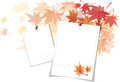 Autumn background vector blank paper layout with beautiful leaves Royalty Free Stock Images