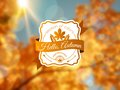 Autumn background with vintage label and sun beam vector illustration abstract blurred bokeh Stock Images