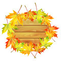 Autumn background wooden noticeboard decorated with maple leaves isolated on white Stock Image