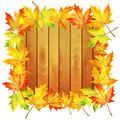 Autumn background wooden noticeboard decorated with maple leaves isolated on white Royalty Free Stock Images