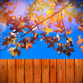 Autumn background with yellow leaves and wooden fence Royalty Free Stock Photo