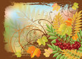 Autumn banner with red rowan berry and maple leave leaves vector illustration Stock Photos