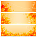 Autumn banners with maple leaves set of horizontal backgrounds foliage Stock Photo