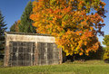 Autumn Barn Royalty Free Stock Photography