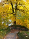 Autumn the beauty of nature in Royalty Free Stock Photography