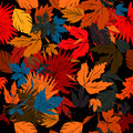 Autumn bed seamless pattern design Royalty Free Stock Photos