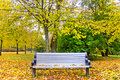Autumn bench Stock Photos