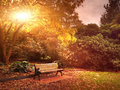 Autumn bench in park with fallen leaves Royalty Free Stock Photo