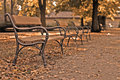 Autumn benches Stock Images