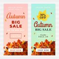 Autumn big sale vector illustration. A pile of dry leaves background, up to 50% off text. Fall discount online shop banner