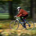 Autumn bike riding Stock Photos