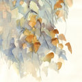 Autumn birch branches with leaves watercolor background