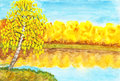 Autumn, birch near lake, painting Royalty Free Stock Images