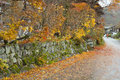 Autumn boundary wall orange yellow and red leaves on maple trees ground and stone Stock Photos