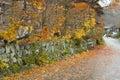 Autumn boundary wall Royalty Free Stock Photo