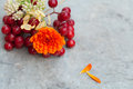 Autumn bouquet with calendula and guelder rose Royalty Free Stock Photo