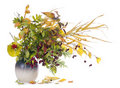 Autumn  bouquet in jug Royalty Free Stock Photo
