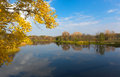 Autumn branch over lake blue water Royalty Free Stock Photo