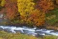 Autumn brook Stock Image