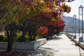 Autumn burley griffin lake canberra australia colours embankment of near national gallery Royalty Free Stock Images