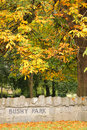 Autumn in Bushy Park. Dublin. Ireland Stock Images