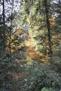 Autumn Cabin in the woods Royalty Free Stock Photo