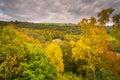 Autumn Canopy from Lambley Viaduct Royalty Free Stock Photo