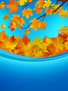 Autumn card of colored leafs. EPS 8 Stock Images