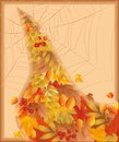 Autumn card with spiderweb Royalty Free Stock Photography