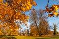 Autumn castle park Budatin near by Zilina, Slovakia.
