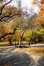 Autumn in Central Park, New York City Royalty Free Stock Photo