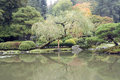 Autumn charm in Japanese garden Royalty Free Stock Image