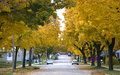 Autumn in the City, Homes, Houses, Neighborhood Royalty Free Stock Photo