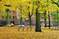 Autumn in a city street covered with gold leaves portland oregon Stock Photos