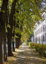 Autumn city street, yellow foliage in the trees and the sidewalk Royalty Free Stock Photo