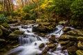 Autumn color and cascades on Boone Fork along the Blue Ridge Par