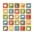 Autumn color icon set Royalty Free Stock Photo