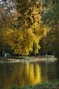 Autumn colorful foliage over lake in lazienki krolewskie park in warsaw poland with beautiful woods Royalty Free Stock Photo