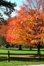Podzim barvy