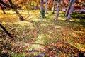 Autumn Colors in Eikando Temple, Kyoto, Kansai, Japan Royalty Free Stock Photo