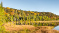 Autumn colors iargo springs ausable scenic byway mi at on the in the huron national forest near oscoda michigan Royalty Free Stock Image