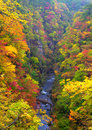 Autumn Colors of Naruko-Gorge Stock Photos