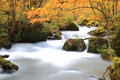Autumn colors of oirase stream aomori japan Royalty Free Stock Images