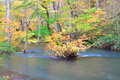 Autumn colors of oirase stream aomori japan Royalty Free Stock Image