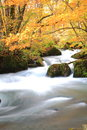 Autumn colors of oirase stream aomori japan Stock Image