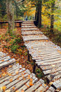 Autumn colors in Plitvice National Park Royalty Free Stock Photo
