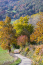 Autumn colors in Pyrenees mountains Royalty Free Stock Images