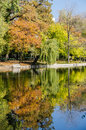 Autumn colors reflections in lake water Royalty Free Stock Photo