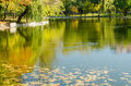 Autumn colors reflections in lake water Royalty Free Stock Image